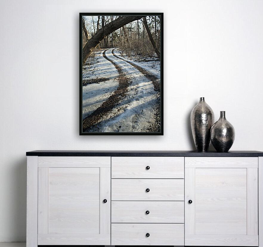 Snowy Trails  Art