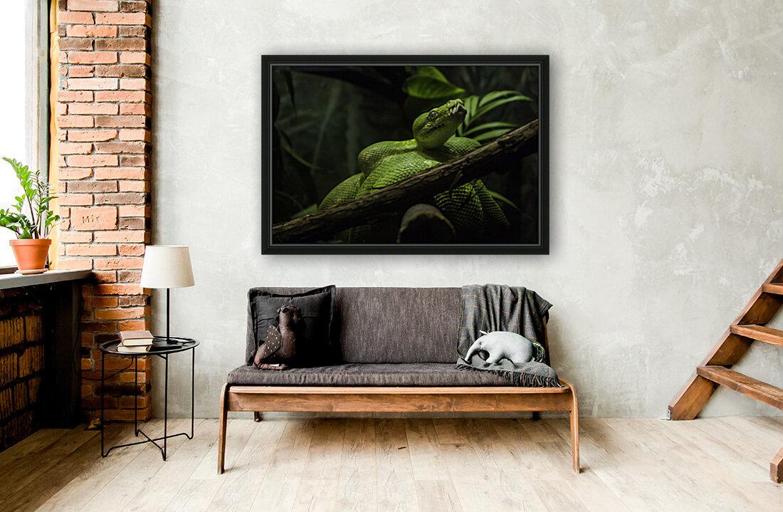 High Detail  Green Boa   Art
