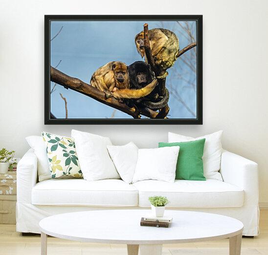 Eyes in the Trees  Howler Monkey   Art