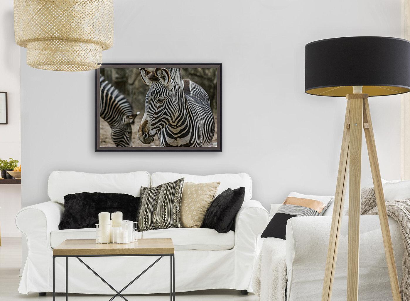 Stripes  Zebra   Art