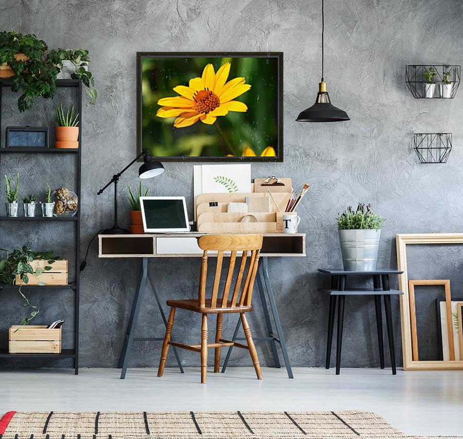 Sunny Side  Art