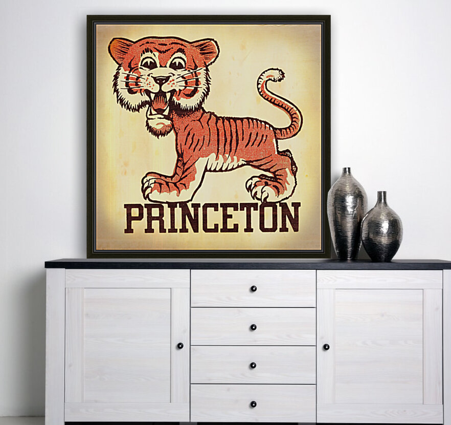 Vintage Fifties Princeton Tiger Remix Art  Art