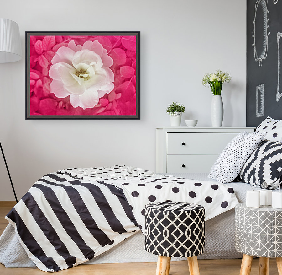 White Rose Top View  Art