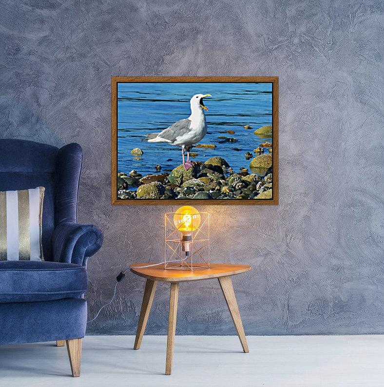 Yawning Gull  Art