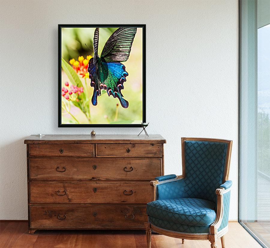 Butterfly not in the sky  Art