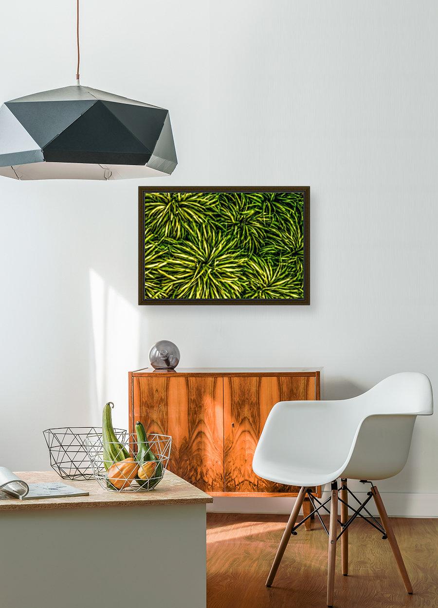Green Chaos  Art