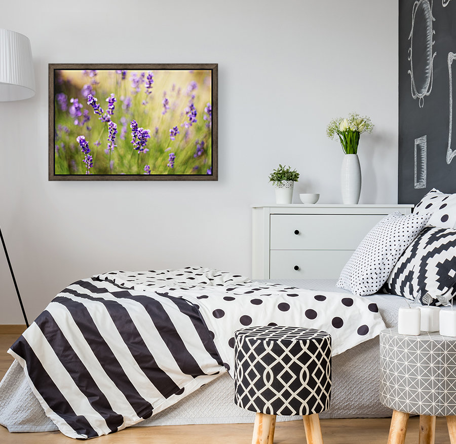 Lavender flowers  Art