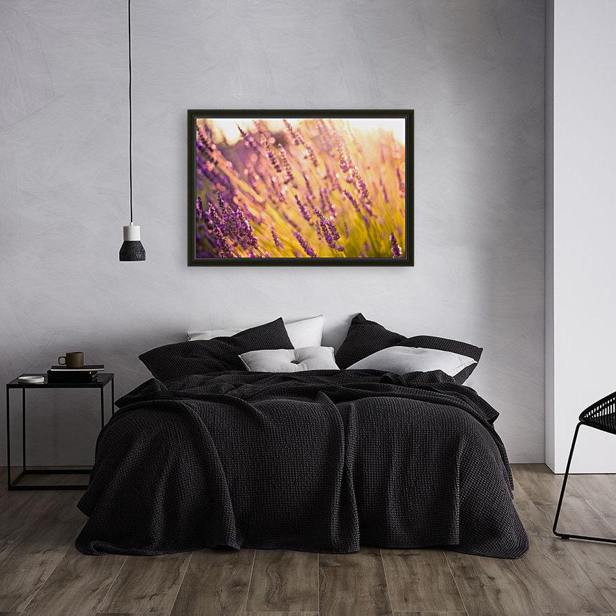 Sunset lavender flowers  Art