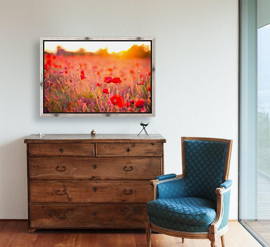 Beautiful Sunset poppy flowers  Art