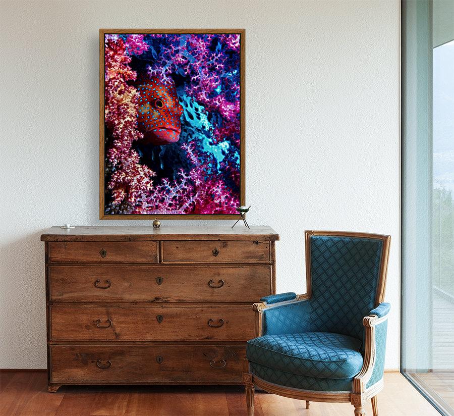 Coral Hind  Art