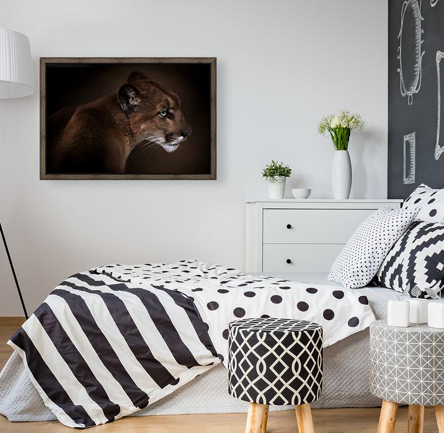 Puma  Art