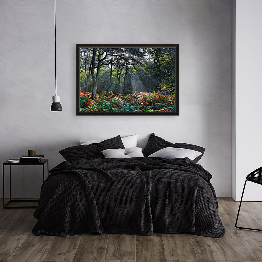 Dewerstone Woods  Art