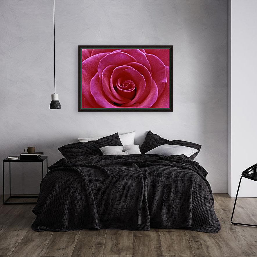 Rose Blossom  Art