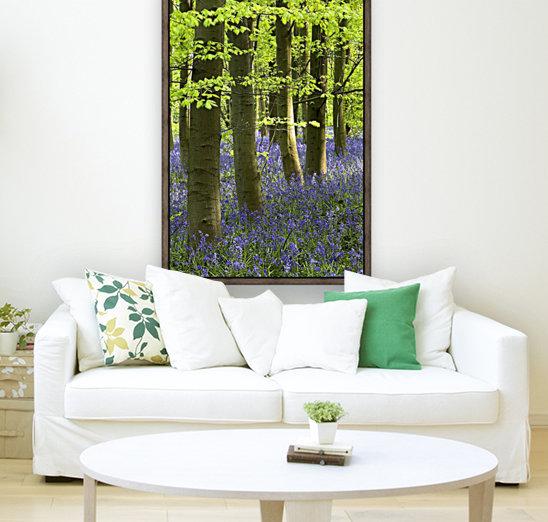 Bluebells In The Woods, Nottinghamshire, England  Art