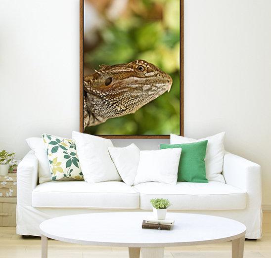 Bearded Dragon Lizard  Art