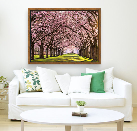 Cherry Blossom in a Park  Art