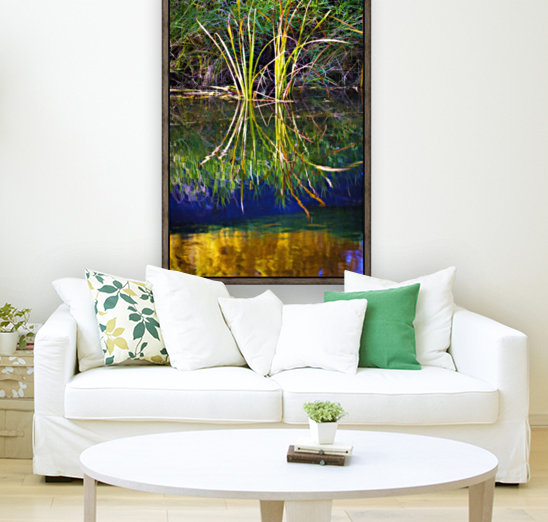 Reeds Reflecting On The Water; St. Albert, Alberta, Canada  Art