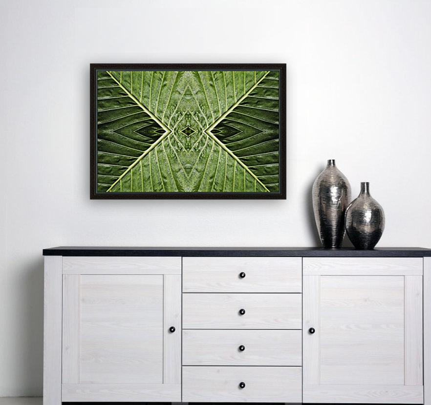 Close up of vein patterns in leaves;Gold coast queensland australia  Art