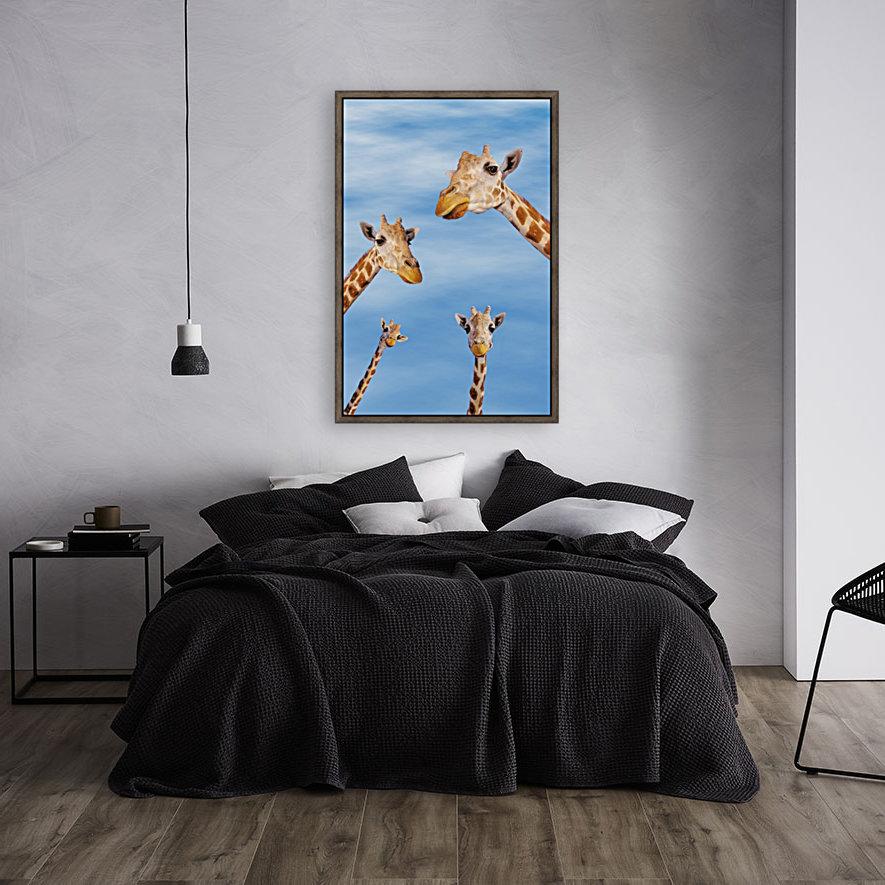 Four giraffes looking downward;Africa  Art