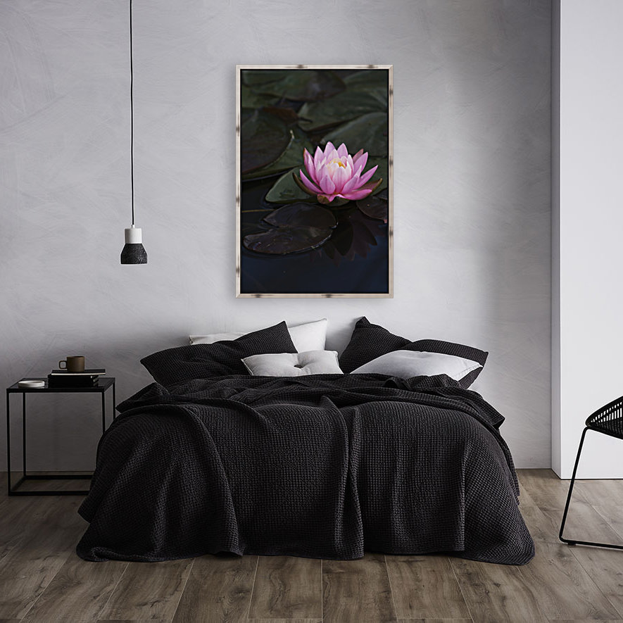 A water lily blooms in a pond; Astoria, Oregon, United States of America  Art