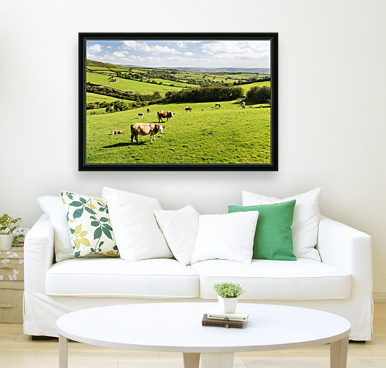 Cattle grazing on lush green hilly pastures with trees separating fields; County Kerry, Ireland with Floating Frame