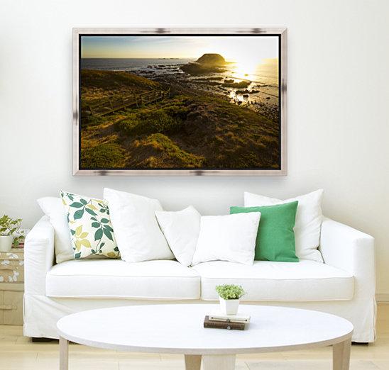 Phillip Island  Art