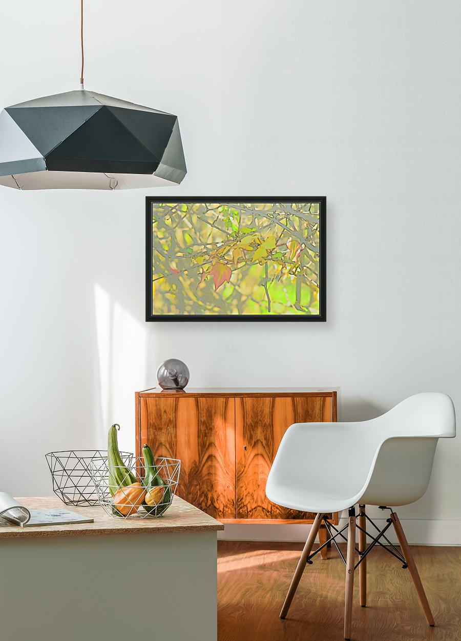 Leaves Macro 5 Abstract 1  Art