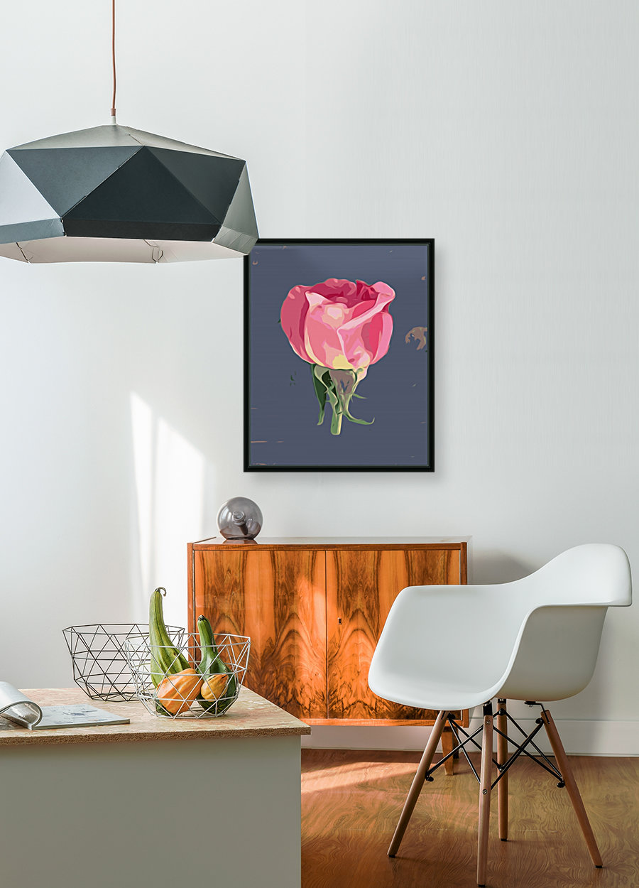 pink rose with grey background  Art