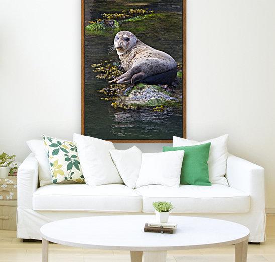 Sea lion portrait near Depoe Bay, OR  Art