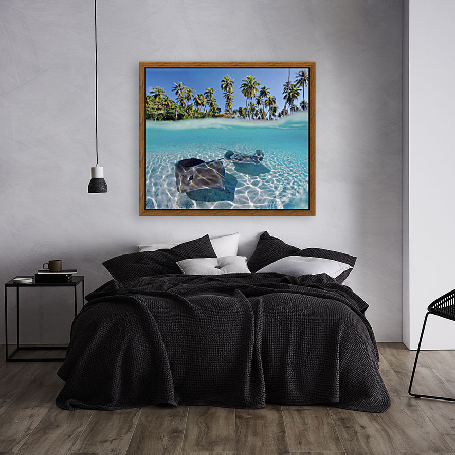 French Polynesia, Tahiti, Moorea, Two Stingray In Beautiful Turquoise Water. with Floating Frame
