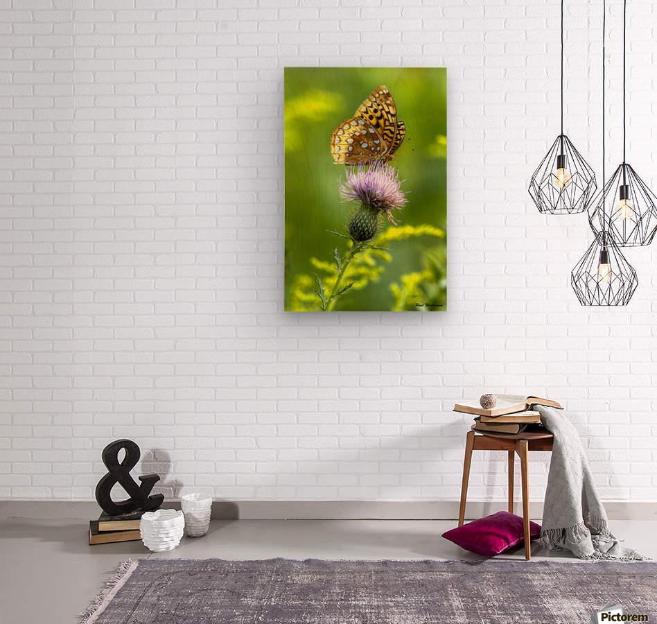 Thistle Nectar  Wood print