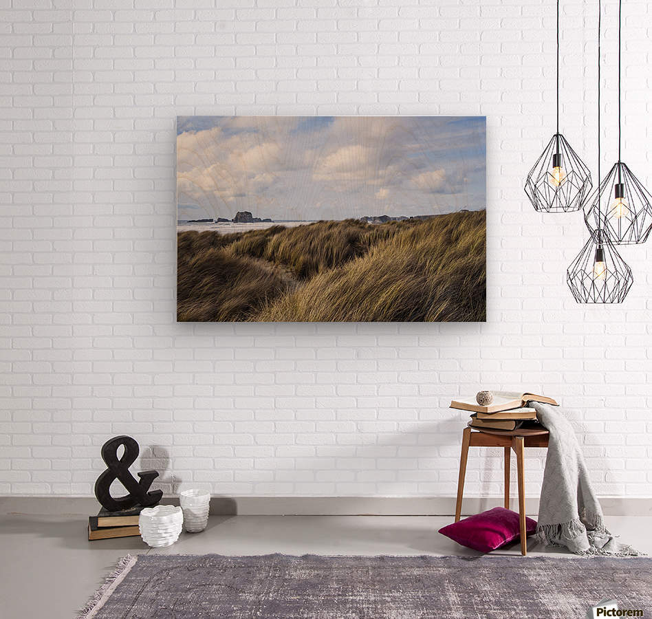 Grass and clouds frame a scene along the coast; Bandon, Oregon, United States of America  Wood print