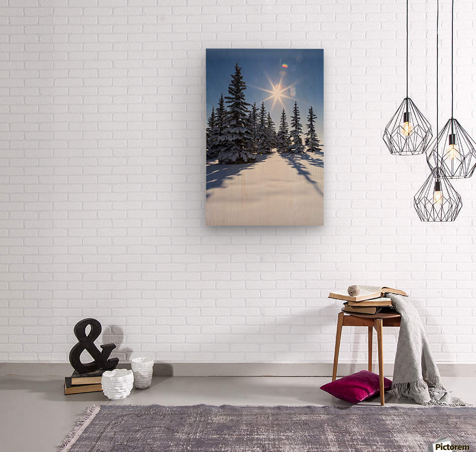 Snow covered evergreen trees on a snow covered hillside with blue sky and sun burst; Calgary, Alberta, Canada  Wood print