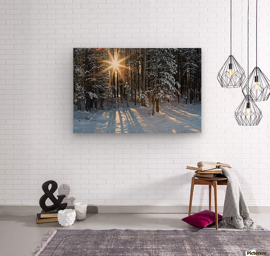 Sunburst coming through a snow covered forest; Kananaskis Country, Alberta, Canada  Wood print