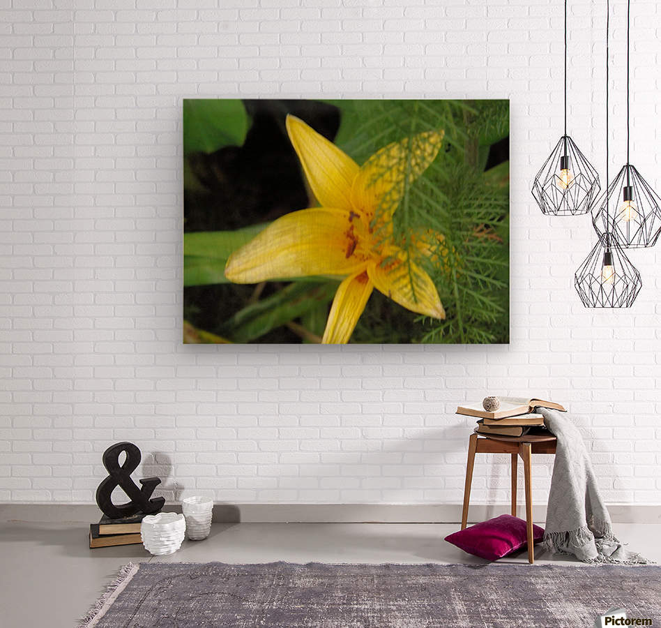 Yellow Flower-2  Wood print