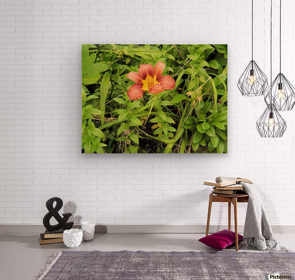 Oranger Lilly 4  Wood print