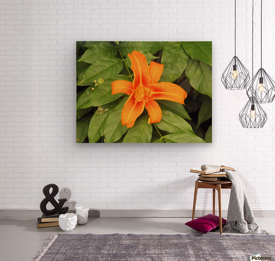 Orange Lilly 1  Wood print