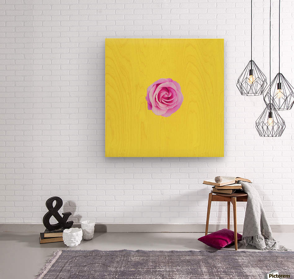 closeup pink rose with yellow background  Wood print