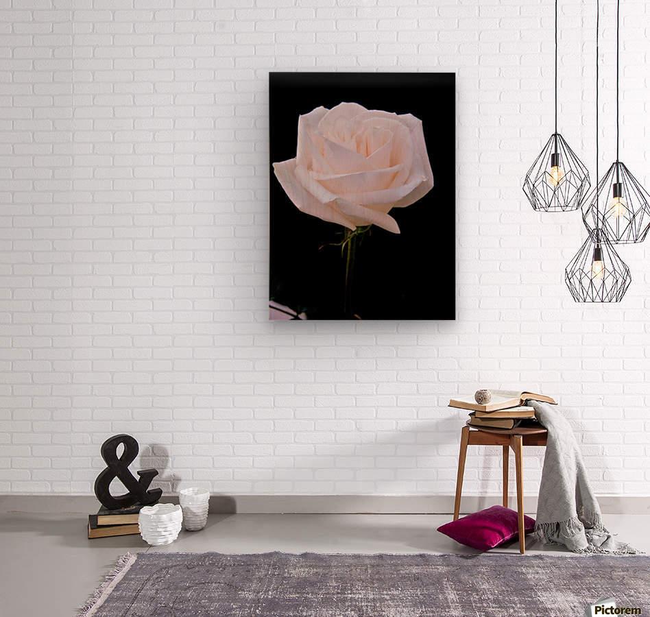 Rose for bride  Wood print