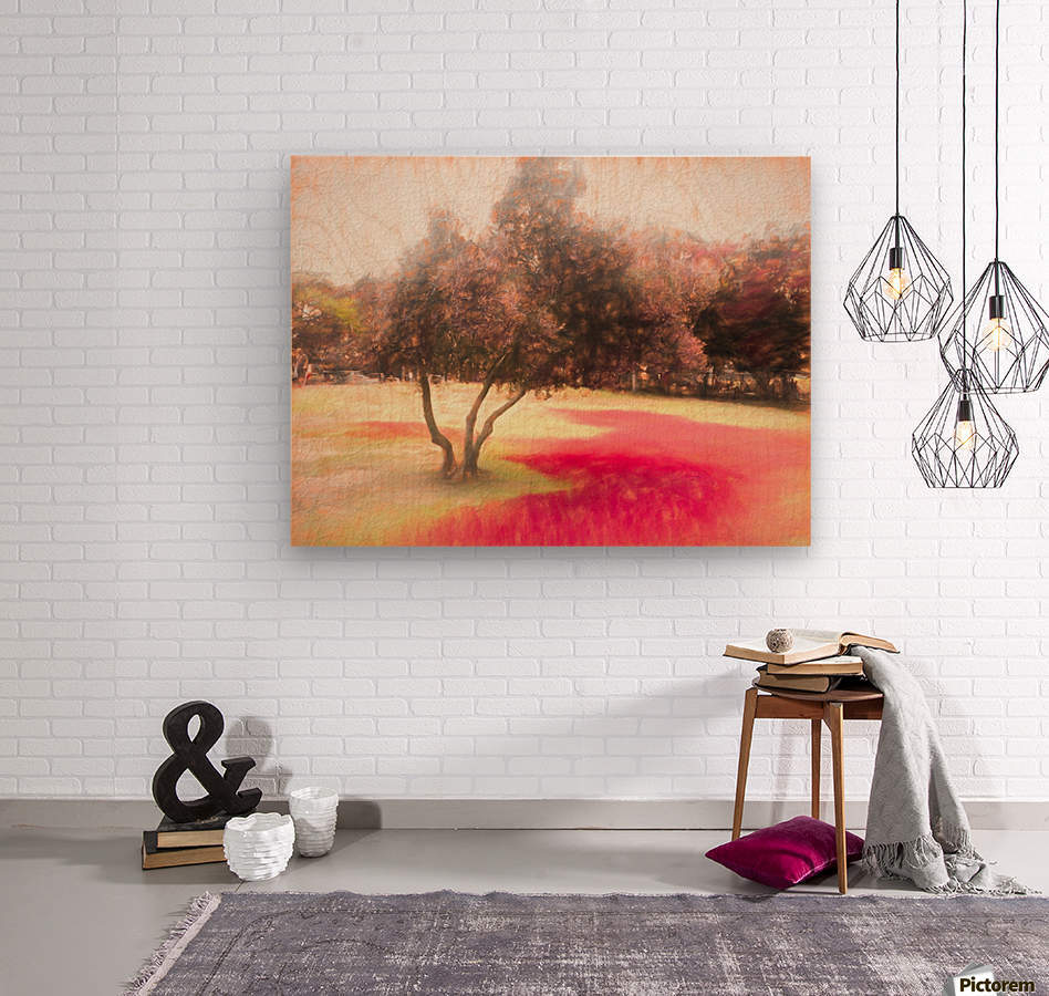 The Raanana Park 1  Wood print