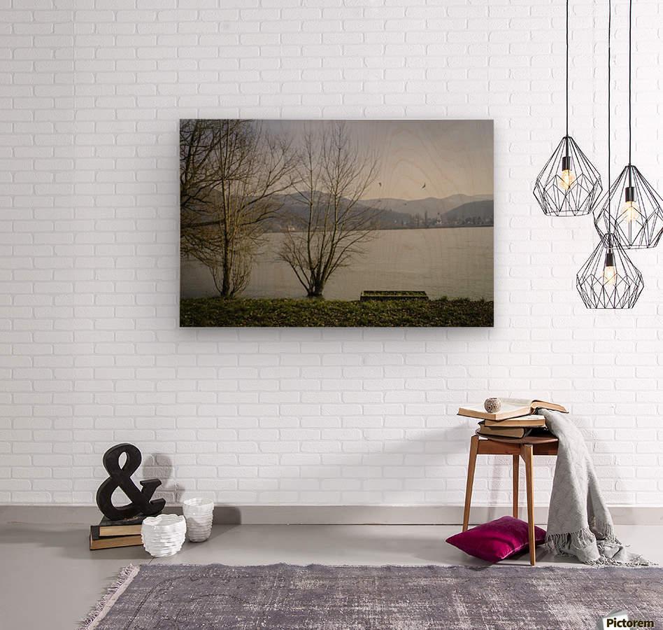 Spring at the River   Wood print