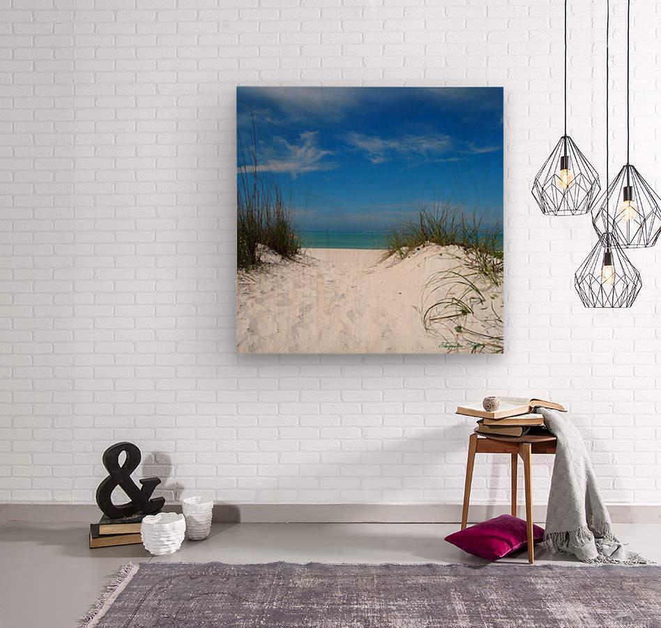 Coquina Dunes  Wood print
