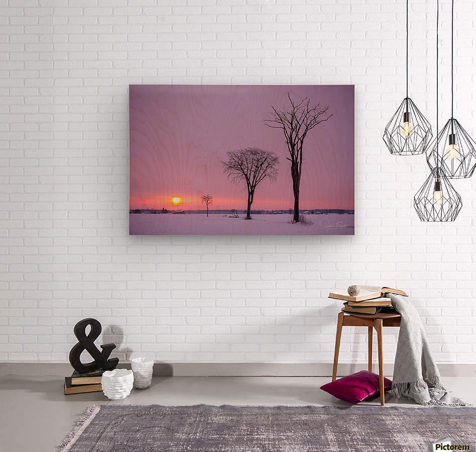 Mirabel mauve  Wood print