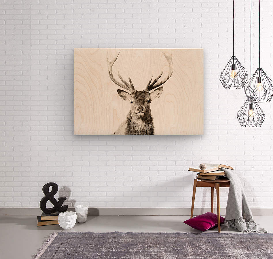 Cerf rouge  Wood print