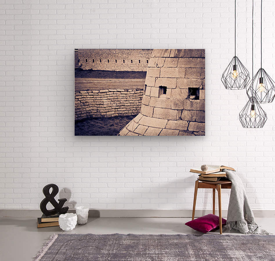 Fort Frederick At Rmc  Wood print