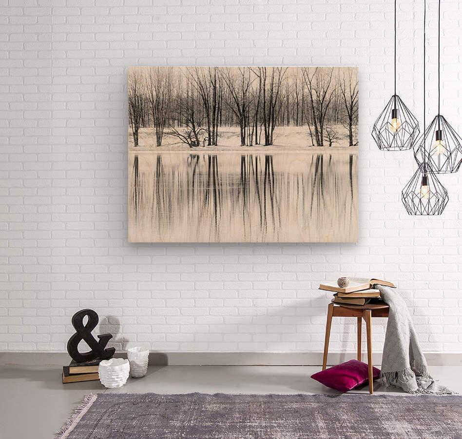 Reflexion  Wood print