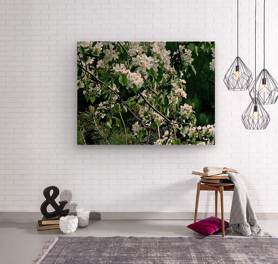 DazzleBlossoms  Wood print
