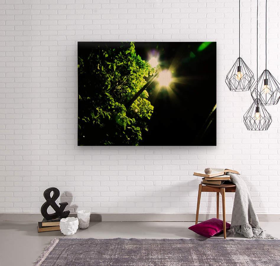 sofn-12072B59  Wood print