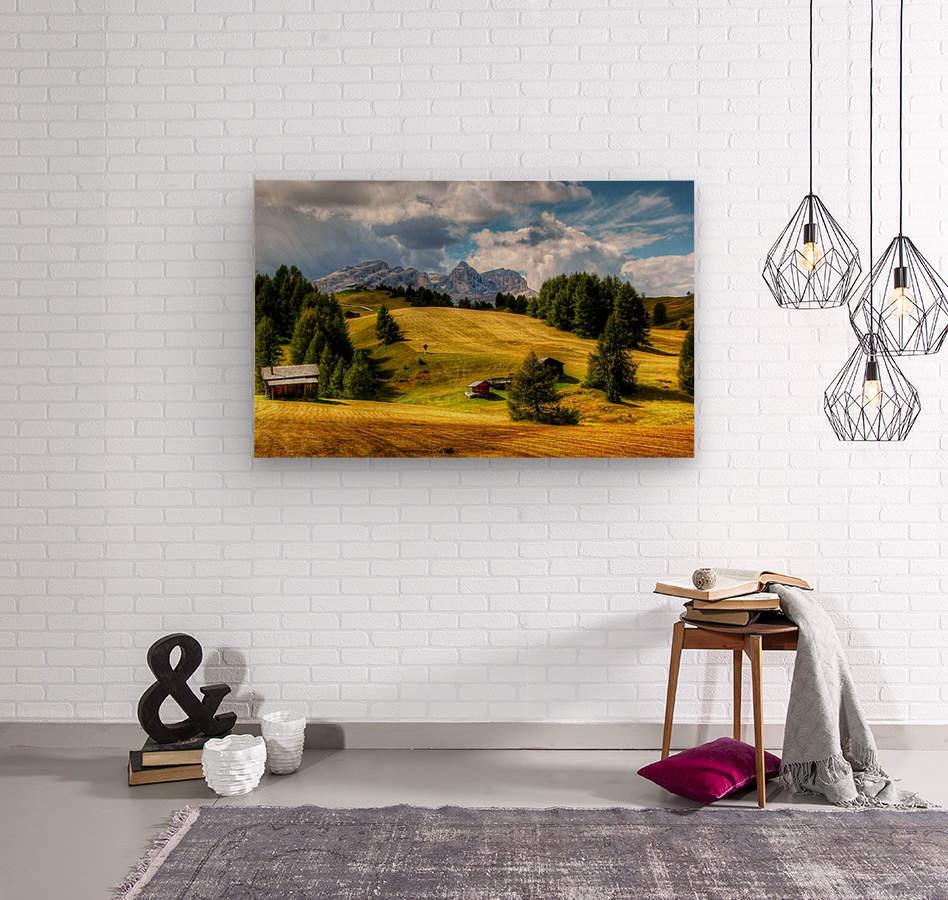Italy DL_2186050  Wood print