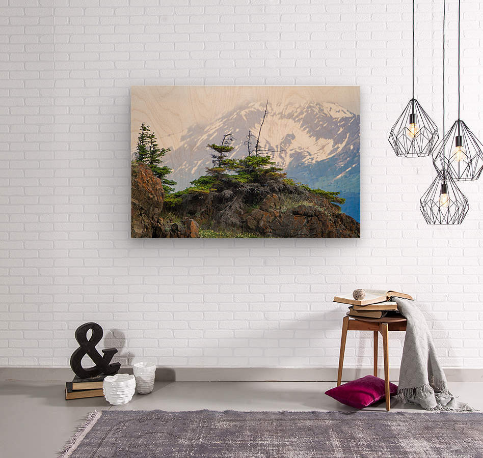 Alaska Scenery Pictures - Cliffs and Mountains  Wood print
